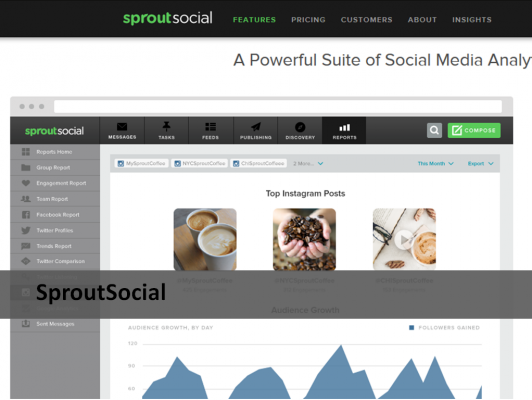 SproutSocial analytic tool